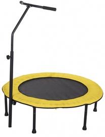 Батут Tesoro Circle, 100 см
