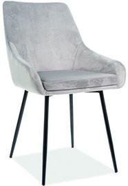 Стул для столовой Signal Meble Chair Albi Velvet Light Grey/Black (поврежденная упаковка)/2