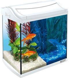Tetra AquaArt LED Goldfish Aquarium White 30L