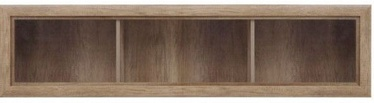 Black Red White Koen 2 Glass-Door Shelf Oak