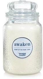 Yankee Candle Classic Large Jar Awaken 623g