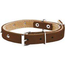 Chaba 600705 Dog Collar Standard Brown