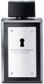 Туалетная вода Antonio Banderas The Secret 100ml EDT