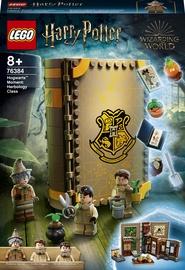 Konstruktors LEGO Harry Potter Mirklis Cūkkārpā: herboloģijas stunda 76384, 233 gab.