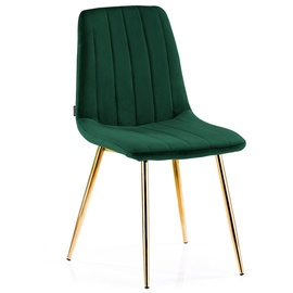 Homede Sarva Chairs 4pcs Bottle Green