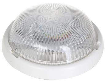 Lena Luna Bulkhead 7W 920lm LED White