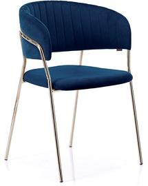 Homede Laredo Chair 2pcs Navy
