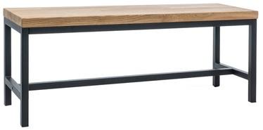 Apavu plaukts Signal Meble Loras Dab/Black, 1200x350x450 mm