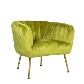 Atzveltnes krēsls Home4you Tucker Light Green/Gold, 78x71x69 cm