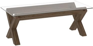 Kafijas galdiņš Home4you Turin, caurspīdīga/ozola, 1210x600x430 mm