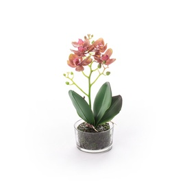 SN Artificial Orchid Flower Pot RU-5820 30cm