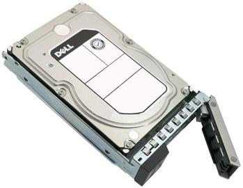 Servera cietais disks (HDD) Dell 400-AUTW, 200 GB