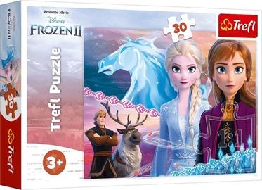 Пазл Trefl Puzzle Frozen II 30pcs 18253
