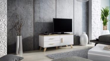 ТВ стол Cama Meble Lotta 120, белый/дубовый, 1200x400x530 мм