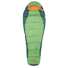 Guļammaiss Coleman Fision 200 Green, 208 cm