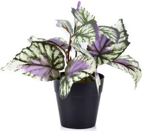 Mākslīgie ziedi Mondex Artificial Flower In Pot 15cm