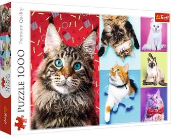 Пазл Trefl Happy Cats 10591, 1000 шт.