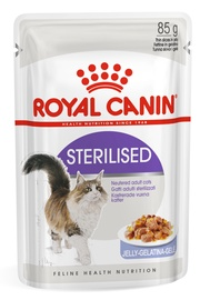 Royal Canin FHN Sterilised In Jelly 85g 12pcs