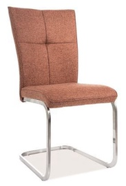 Signal Meble Chair 190 Brown