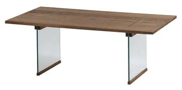 Kafijas galdiņš Szynaka Meble Aquarius Oak, 1100x600x410 mm