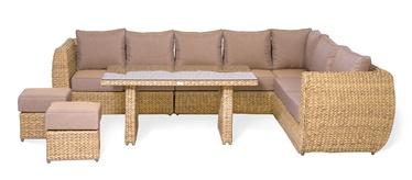 Masterjero Barley Field Garden Furniture Set Brown
