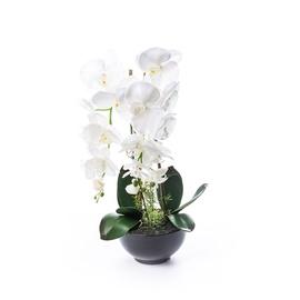 SN Artificial Orchid Flower Pot RU-5741 62cm