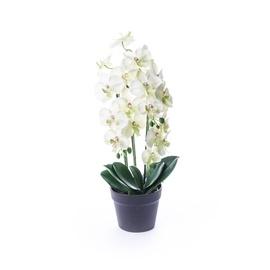 SN Artificial Orchid Flower Pot BDC18102 61cm