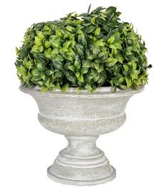 Home4you Artificial Green Bush In Buxus Pot H22cm