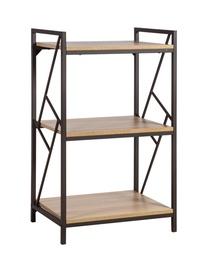 Study 3-Tier Shelf 40823