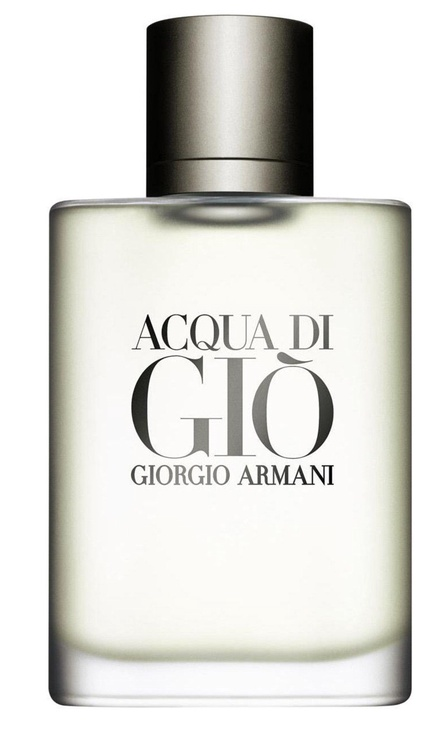 Giorgio Armani Acqua di Gio Pour Homme 100ml EDT