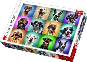 Puzle Trefl Funny Dog Portraits 10462, 1000 gab.