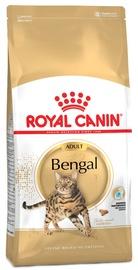 Royal Canin FBN Bengal Adult 10kg