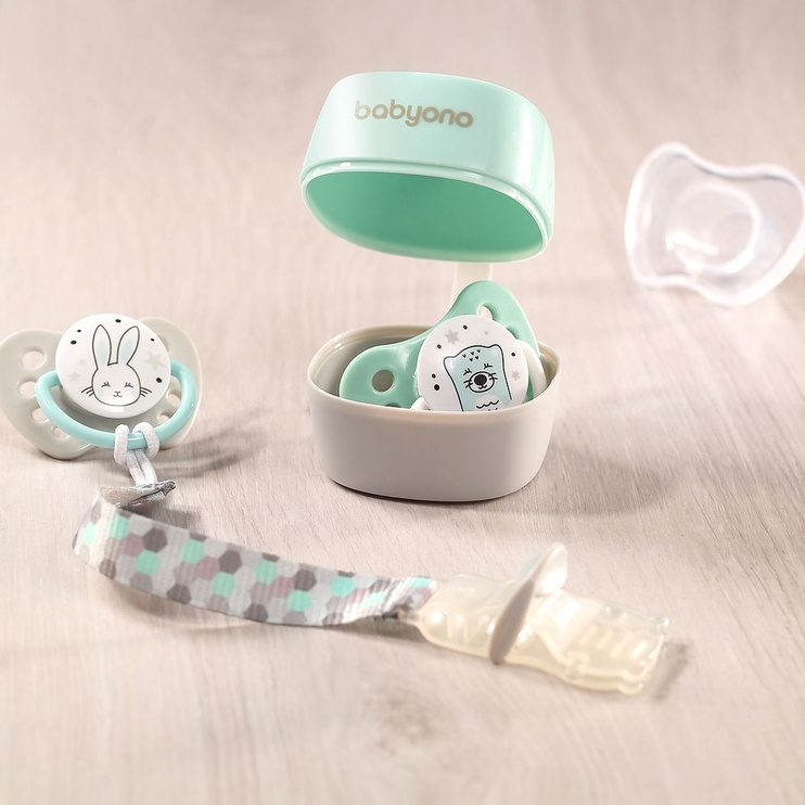 BabyOno Natural Nursing Soother Case Mint/Gray 535/02