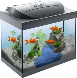 Аквариум Tetra Starter Line LED Goldfish, черный, 30 л