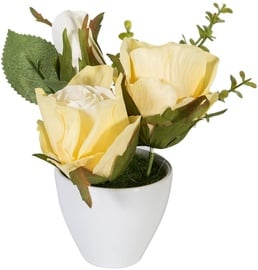Home4you Roses In Garden With White Pot H15cm Yellow