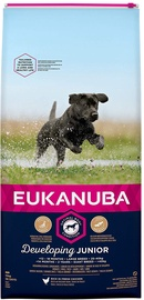 Eukanuba Junior Large Breed With Chicken 15kg