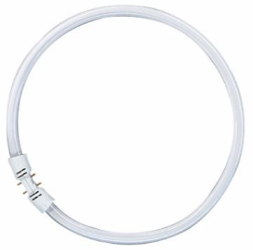 Osram Lumilux T5 FC Lamp 40W 2GX13 Cool White
