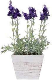 Mākslīgie ziedi Home4you In Garden Lavender In Pot, koks, balta/violeta