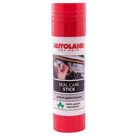Šķīdinātājs Autoland Rubber Freezing Protection Stick, 40 ml