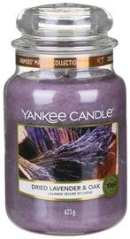 Aromātiskā svece Yankee Candle Classic Large Jar Dried Lavander & Oak, 623 g, 110 h