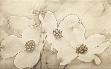 DEK TUTI BEIGE INSERTO FLOWER 25X40 (12)
