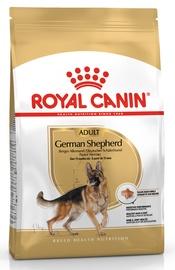 Сухой корм для собак Royal Canin BHN German Shepherd Adult 3kg