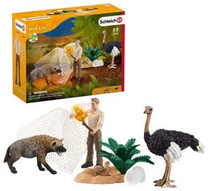 Rotaļlietu figūriņa Schleich Wild Life Hyena Attack 42504