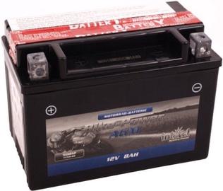 Akumulators IntAct AGM YTX9-BS, 12 V, 8 Ah