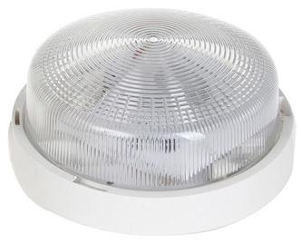 Светильник Lena Rondo Bulkhead 7W 920lm LED White