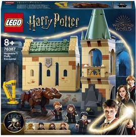 Konstruktors LEGO Harry Potter™ Cūkkārpa: sastapšanās ar Pūkainīti 76387, 397 gab.