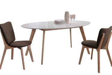 Обеденный стол Signal Meble Montana White/Oak, 1600x900x750 мм