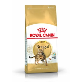 Royal Canin FBN Bengal Adult 2kg
