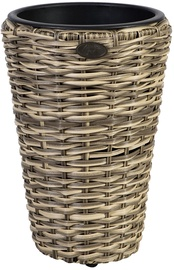 Home4you Flower Pot Wicker 28xH40cm Beige 35121