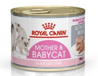 Barība Royal Canin Babycat Instinctive, 195 g